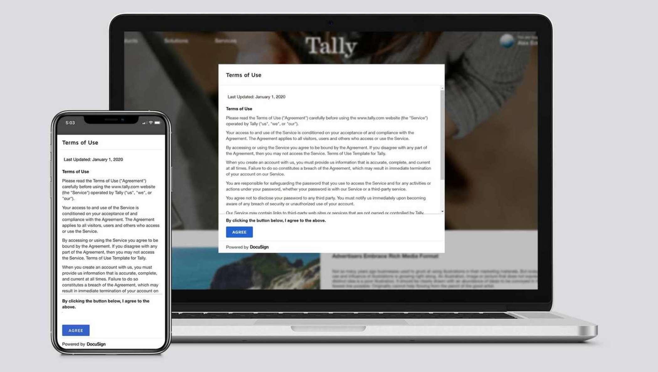Ein Nutzungbedingungsvertrag in einer Lightbox in einem Webbrowser.